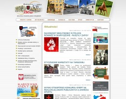 Strona internetowa Urzędu Miasta i Gminy w Skaryszewie